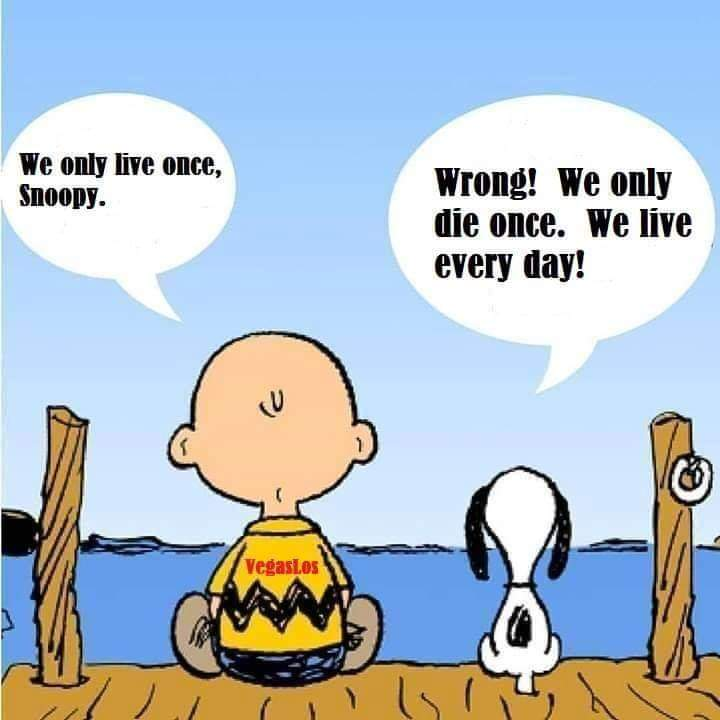 #truth #CharlieBrown #Snoopy #livelife https://t.co/N4vACuCQrh