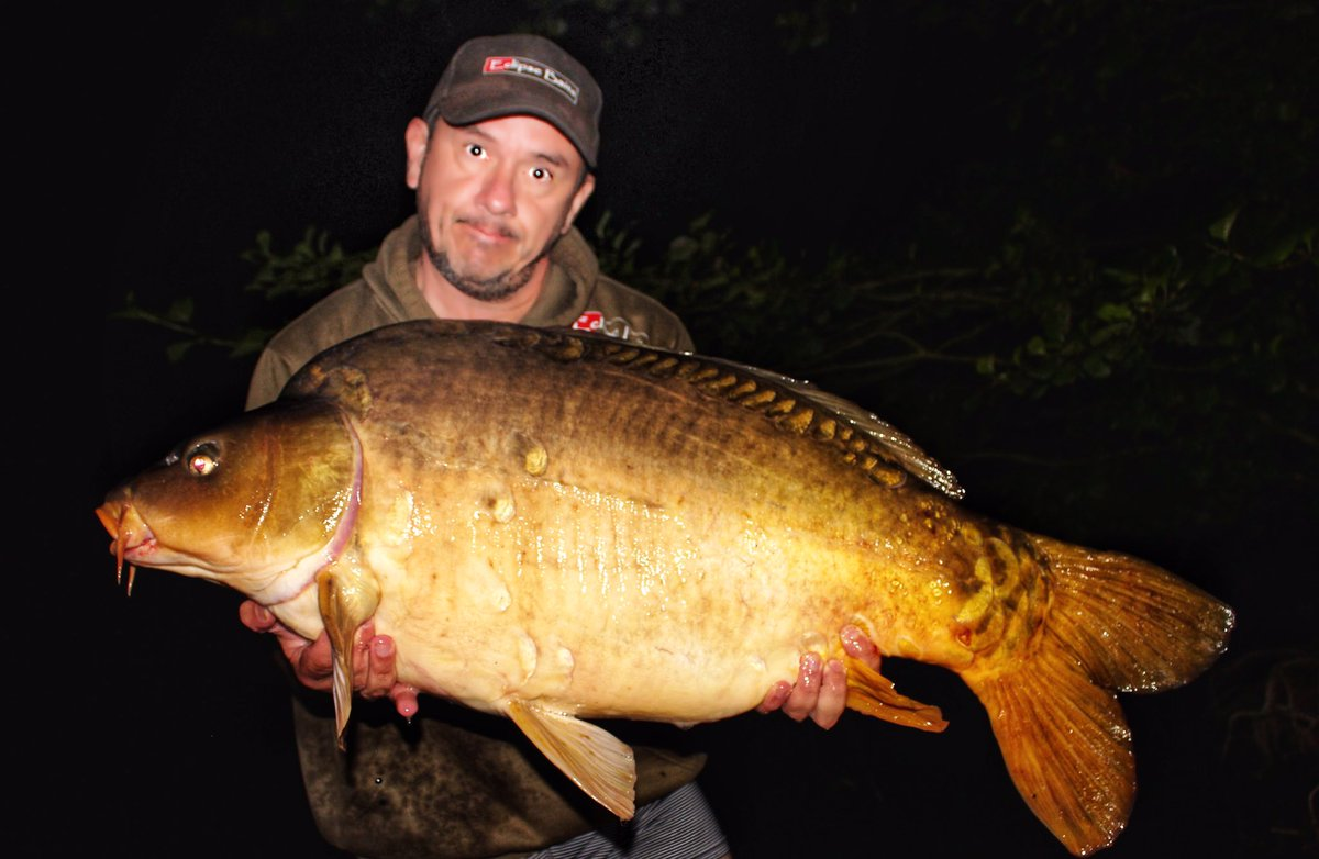 A Flores chunk from last summer #carpfishing #eclipsebaits #<b>Thatscarpy</b> https://t.co/nuPW2G9K6