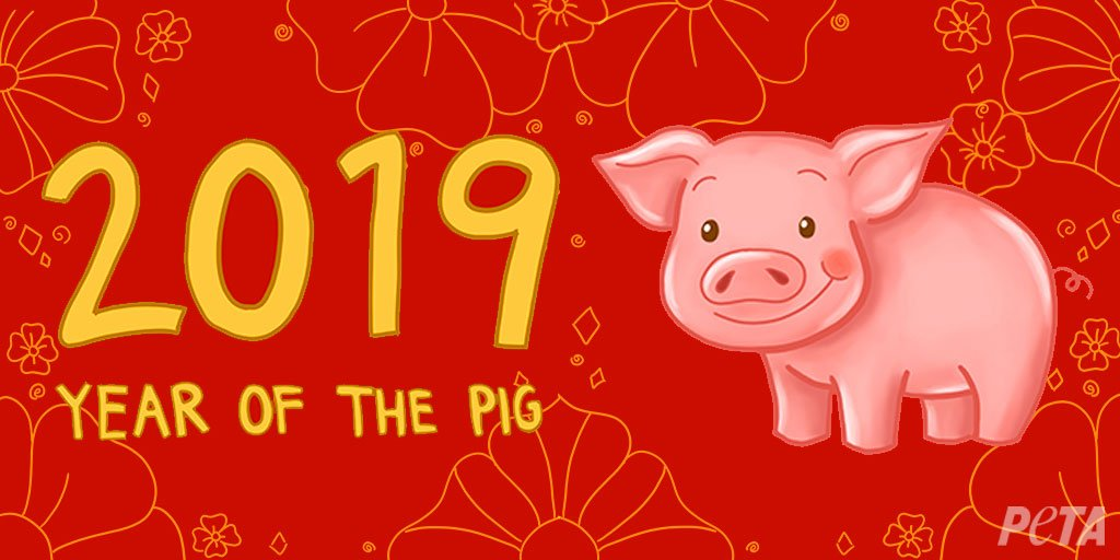 RT @peta: Make 2019 the sweetest year yet for pigs, don't eat them! ❤️ #GoVegan #YearOfThePig #ChineseNewYear https://t.co/aakDqldPsJ