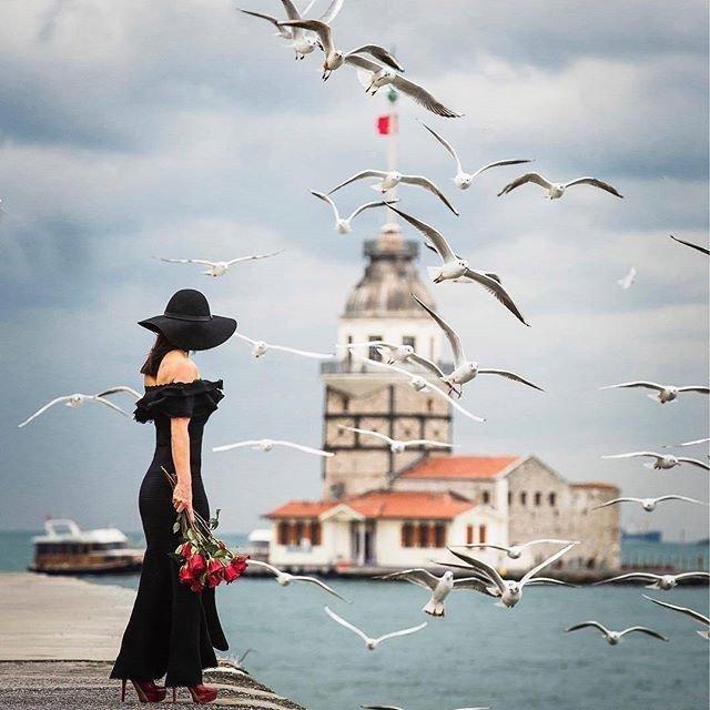 ليتنا  كالطيور... نحلق..و نرتفع..نغادر و نسافر...!! من المنفى الى الوطن،، ومن الوطن إلى كل مكان نعشقه.! نستوطن الأماكن الجميلة ..دون اوراق إقامة... ويحق لنا الرحيل..و التجول بدون جواز سفر.. https://t.co/flfcf2y8L0