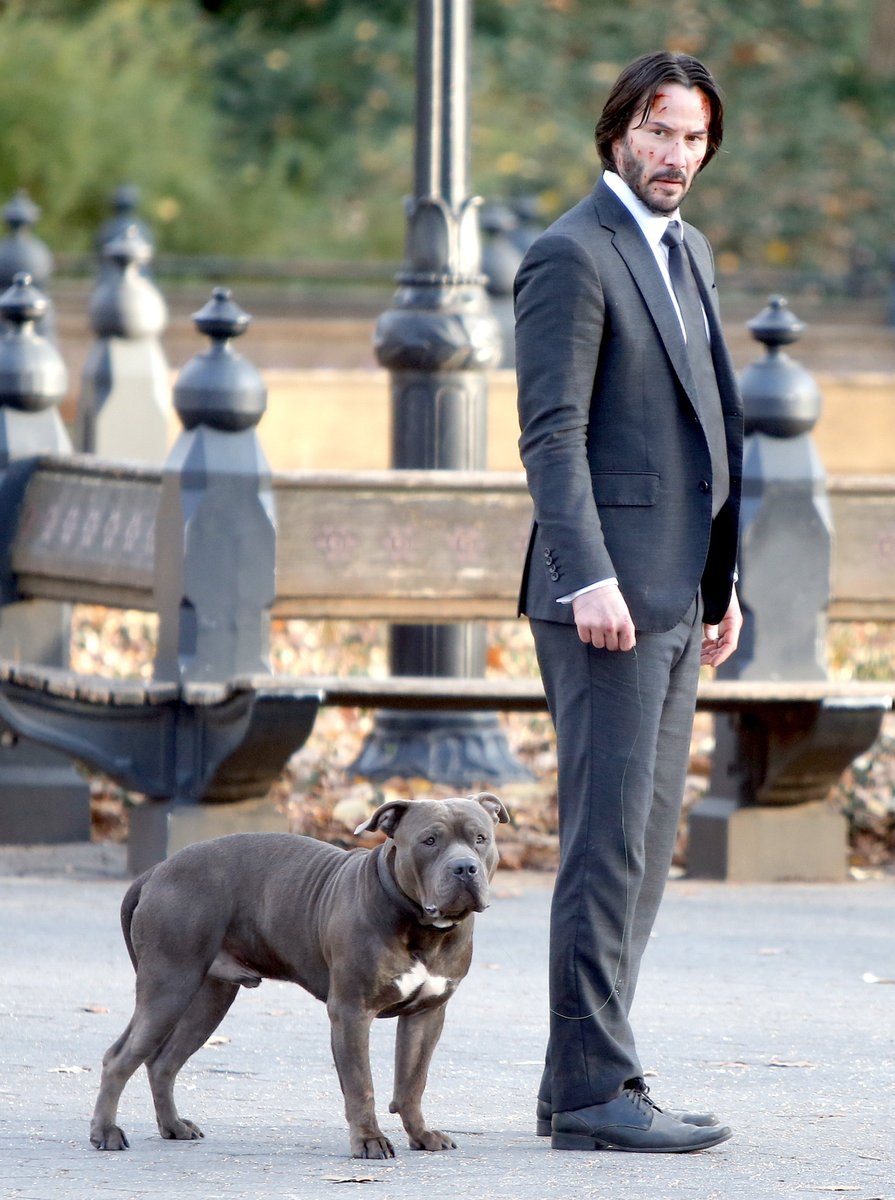 RT @keanuthings: keanu reeves with his canine co-star Burton/Bubba #LoveYourPetDay https://t.co/DQxIV2dXLq