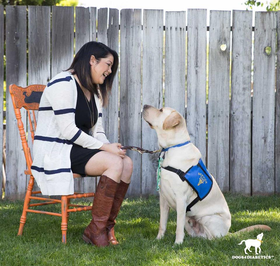 test Twitter Media - While we join the #diabetic community in hoping for a cure, D4D's mission is to support diabetics and their families by empowering them to thrive today.   🐶 Visit @Dogs4Diabetics to learn more about our mission: https://t.co/kGwuTS0MvA  #type1diabetes #Type1 #Diabetes #T1D https://t.co/hRdqBWHFmb