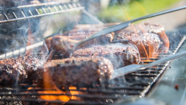 Police looking for thief who swiped steaks off family's barbecue