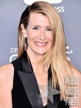 Happy Birthday Wishes to this lovely lady Laura Dern!