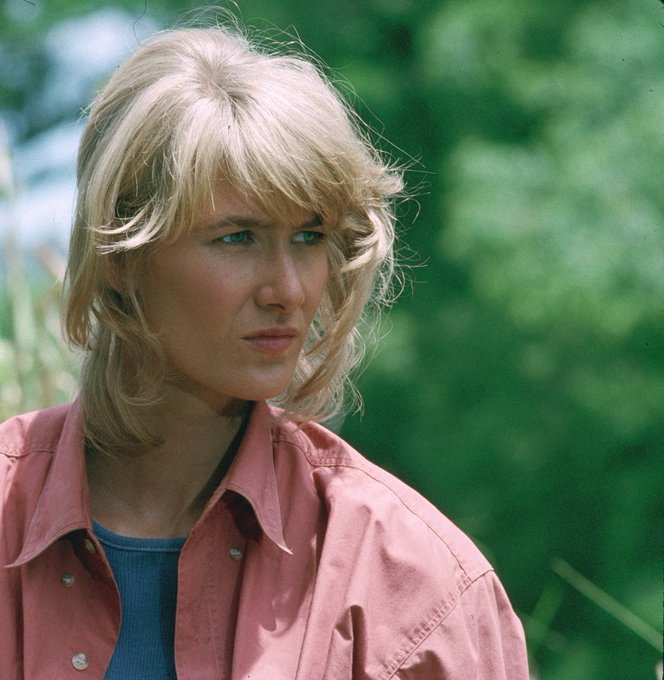 Happy Birthday Laura Dern, had a big crush on you!
