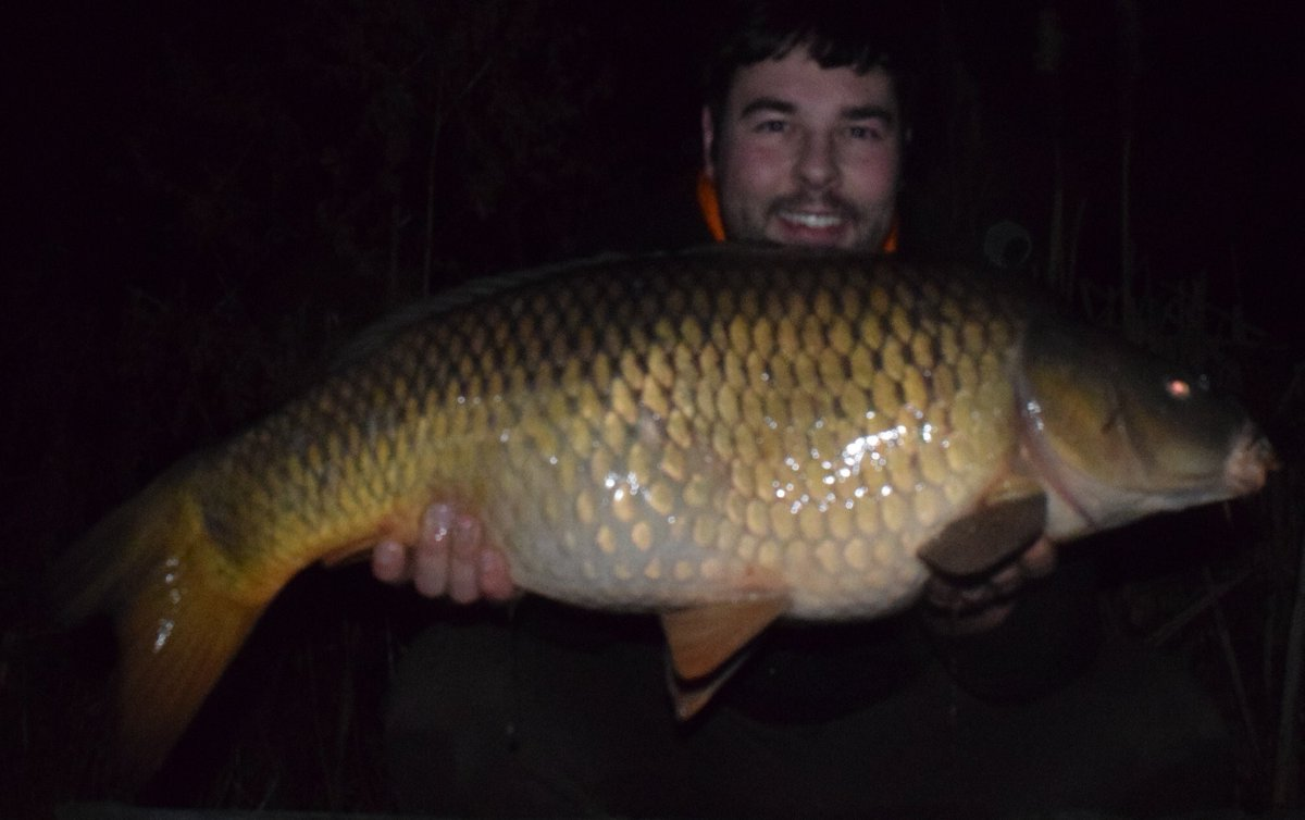 Nice 25/8 from my last <b>Session</b> #CarpFishing https://t.co/zhsihfNRmx