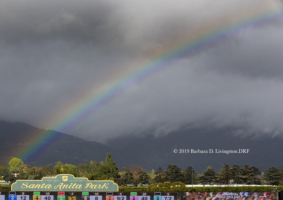 RT @DRFLivingston: This afternoon, between raindrops, at @santaanitapark . https://t.co/YQjG933w0x