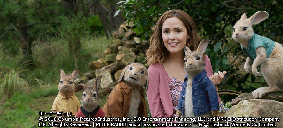 test ツイッターメディア - 『ピーターラビット』 2/15(金)よる9:00⇒https://t.co/9fiATcqacm  世界的人気の絵本を実写映画化📖✨ ウサギのピーターと仲間たちが、神経質な隣人とヒロインをめぐって戦いを繰り広げる、アドベンチャーコメディ🐇🐇  #wowow #ピーターラビット #ローズ・バーン #ドーナル・グリーソン https://t.co/eskoOIRiRF