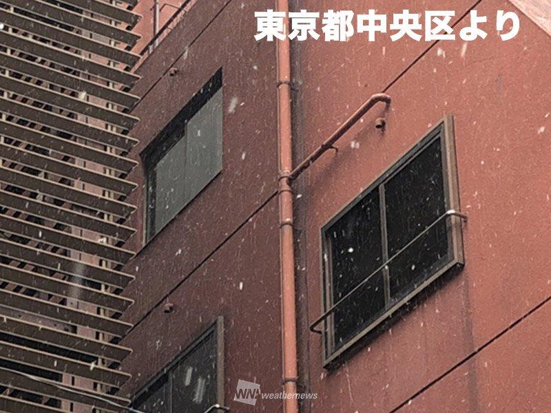 test ツイッターメディア - 【東京都心でも雪を観測】 千葉や神奈川を中心に雪を降らせている雲の一部が東京都内まで広がって、気象庁のある東京・大手町でも11時15分から雪を観測。2月に入ってからは4日目となり、2月の平年日数の3.7日を上回りました。 雪が降りやすいのは15時くらいまでの予想です。 https://t.co/uZdFd12DL5 https://t.co/ztDJfpIIya