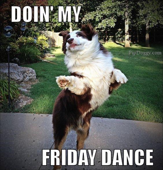 Whoop whoop! Happy Friday :) #vieravet #Friday https://t.co/TWAD2zDwiI