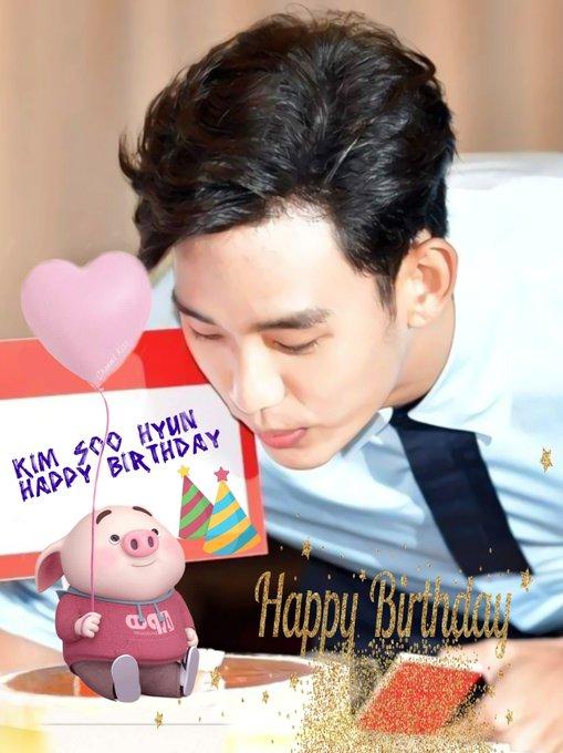 Kim Soo Hyun Happy Birthday
