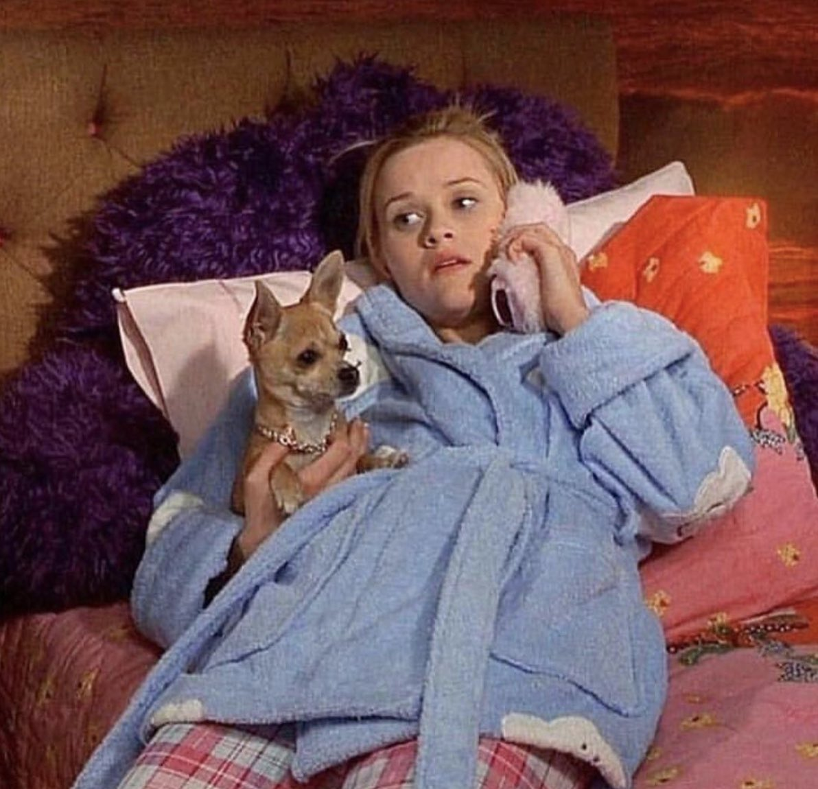 """Sorry I can't, I'm busy"" - me when someone tries to make plans this weekend #flashbackfriday #legallyblonde https://t.co/nYfKT8j8Cu"