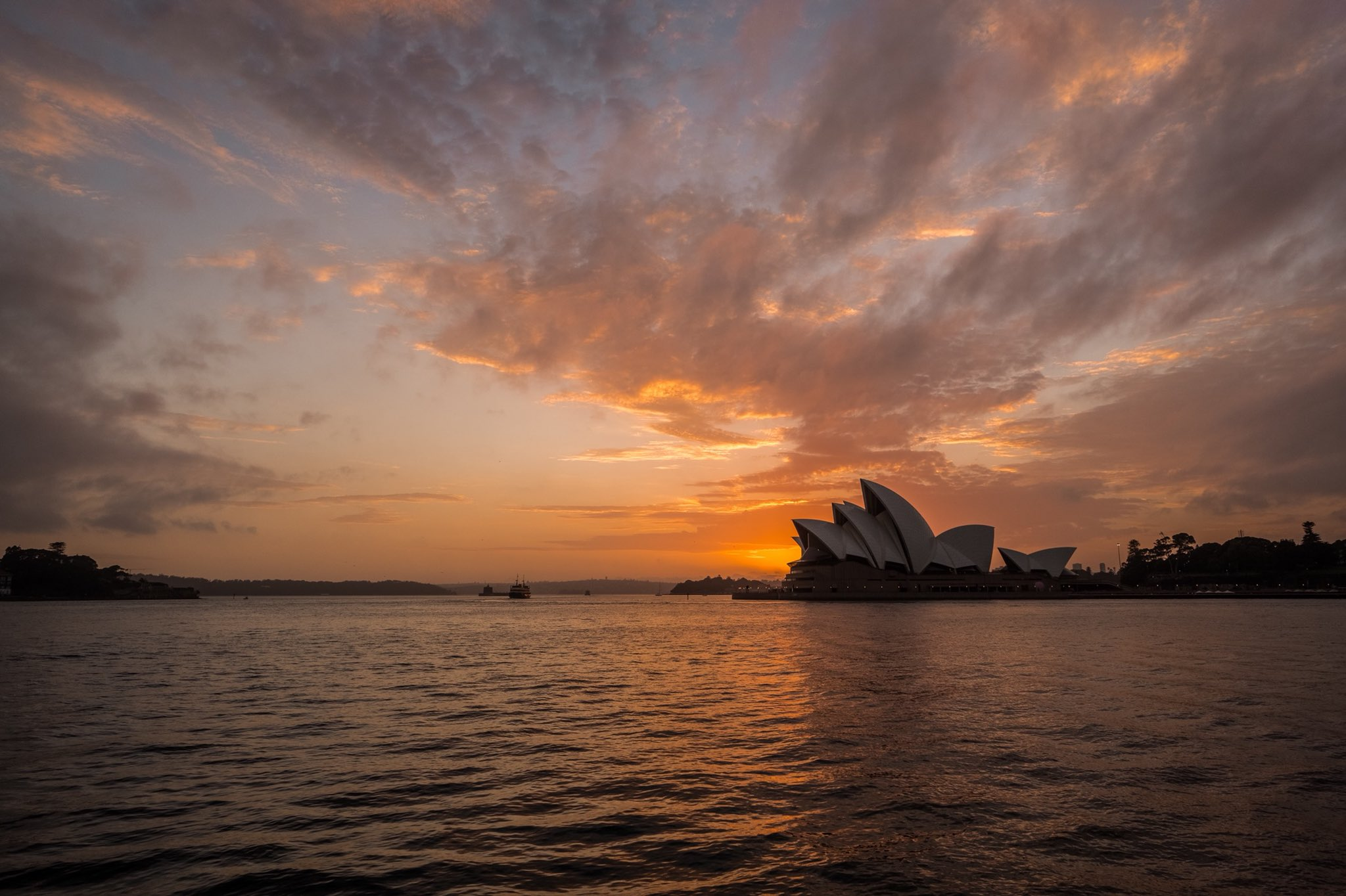 Where else would I be on my first morning back in town? @SydOperaHouse https://t.co/EeT3gF7RSW