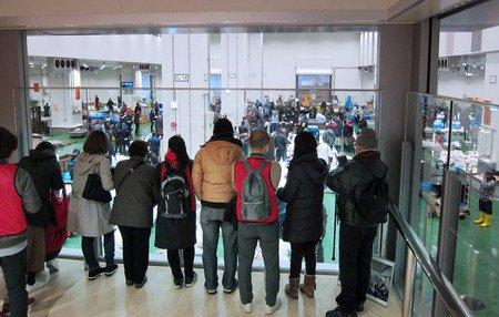 test ツイッターメディア - 【豊洲市場、マグロ見学振るわず】  東京・豊洲市場でマグロの競り見学が、専用エリアを開設した1月15日から1カ月たっても振るいません。築地市場(中央区)では連日、多くの見学者がいましたが、…  続きはこちら⇒https://t.co/dbShKKxsNW https://t.co/iJBTg5vHjb
