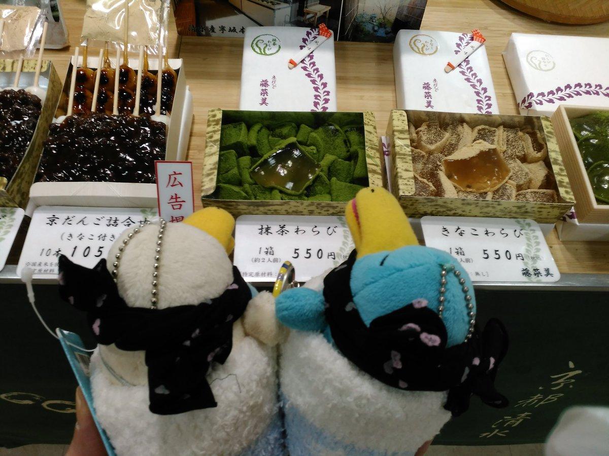 test ツイッターメディア - イコちゃん「他にこれも買ったで❗」 スマイコ「京だんご・藤菜美の抹茶わらびや」 イコちゃん「店員さんワテら見てビックリしとった、居るとは思わんで」 イコちゃん「次いでに舟和の芋ようかんも買ったで」 イコちゃんズ「飼い主さん、明日も買いにICOCA~🎵」 飼い主「姫路の店もあるからね😃」 https://t.co/WOyhwhicAv