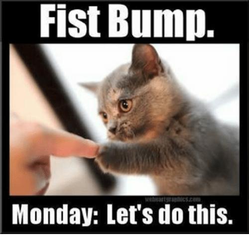 Motivation Kitty says, #vieravet #motivation https://t.co/k6uuAqOfkQ