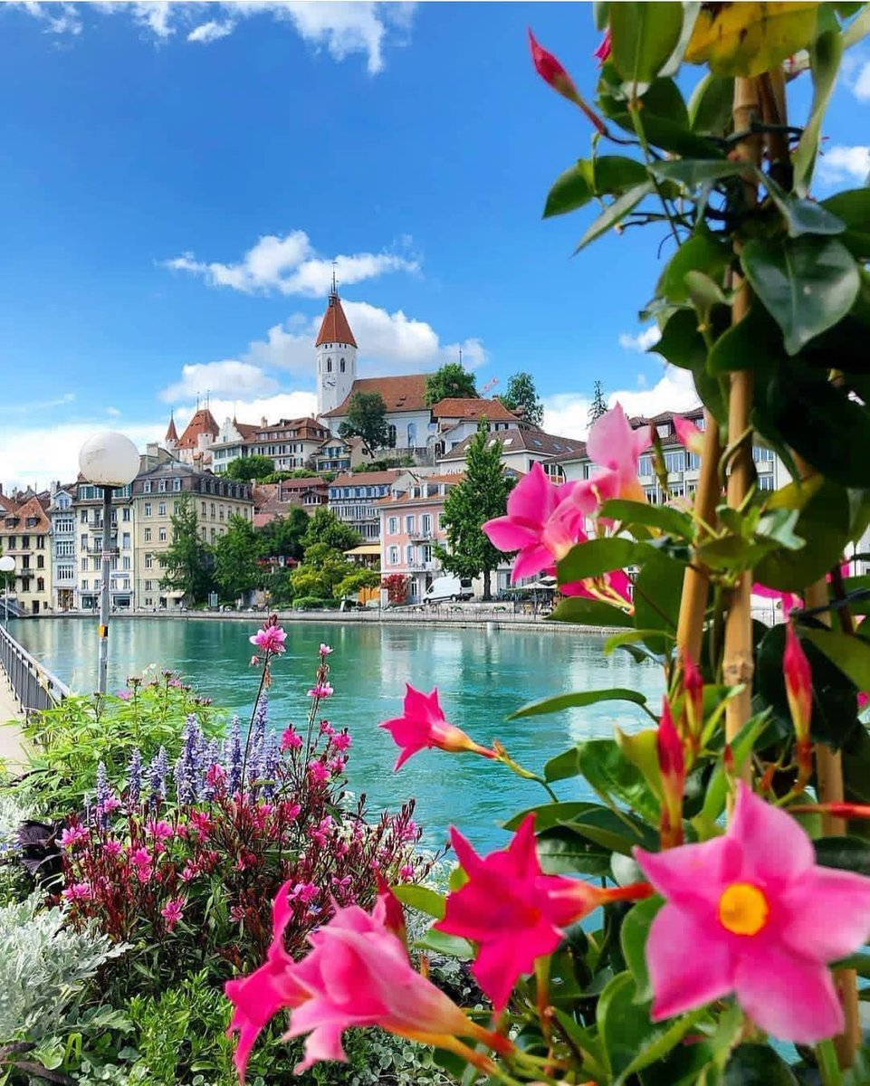 RT @earthposts: Spring in Thun, Switzerland https://t.co/NI5vMwn9UD