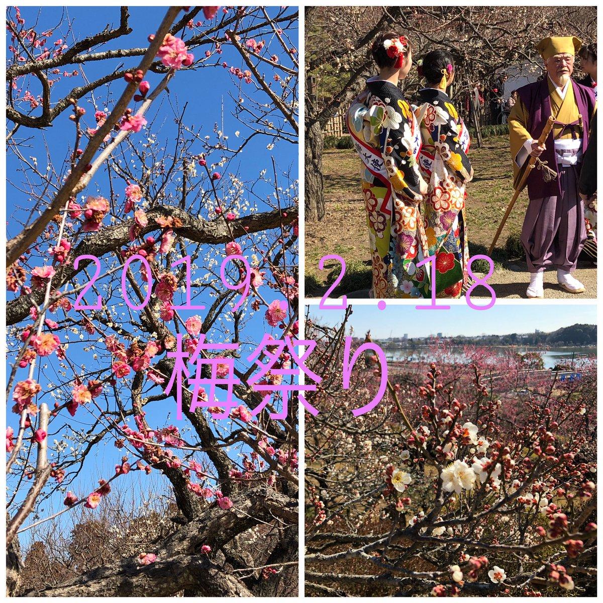 test ツイッターメディア - 昨日は、天気が良いので水戸の偕楽園梅祭りへ行って来ました。 まだ、南側だけが咲いていて、全体が満開になるのは、3月上旬頃みたいですが、沢山の見物人が来てました。水戸黄門様もいました。 今日は、ひたすら寝て過ごしてます。 https://t.co/wR4UZ9F1aK