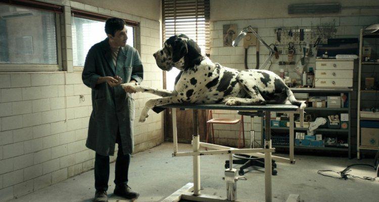 #Dogman