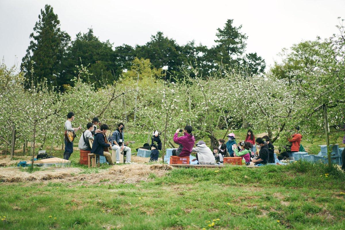 test ツイッターメディア - 【Sakk Porano〜リンゴの花咲く演奏会🍎】 地域×音楽アートの活動であるSakk Poranoの演奏会inりんご畑 佐久広域にこんな素敵な場所があるので弾いて欲しい、楽器を持って参加したい、などお待ちしています!  https://t.co/ter7N1tFRZ  #ワーケーション #リゾートテレワーク #二拠点生活 #地方移住 https://t.co/40cphRD4S9