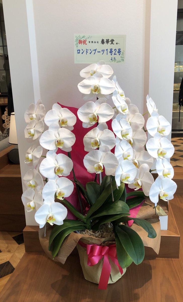 test ツイッターメディア - @atsushilonboo まさかのお供え物が 春華堂の うなぎパイVSOPとは😳💕  スイーツバンクにもお花を ありがとうございます✨  おもろい母ちゃんさんも 喜んでくれてますように✨🙏✨ https://t.co/1atzYn3mQP
