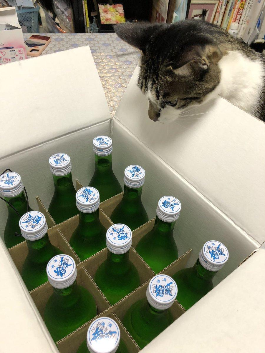 test ツイッターメディア - 今日もお仕事の合間にネスパス新潟に立ち寄りました。  もはやルーティンワーク!  お昼に新潟のお米の筋子おにぎりとヤスダヨーグルト。 レモン味でした🍋  家に帰ると〆張鶴の冷酒が届いていました。二口飲んで真っ赤です😊  コロナ禍になってから村上に戻ってないカエリタイナ  〆張鶴うまっ😋 https://t.co/vv25Ef642L