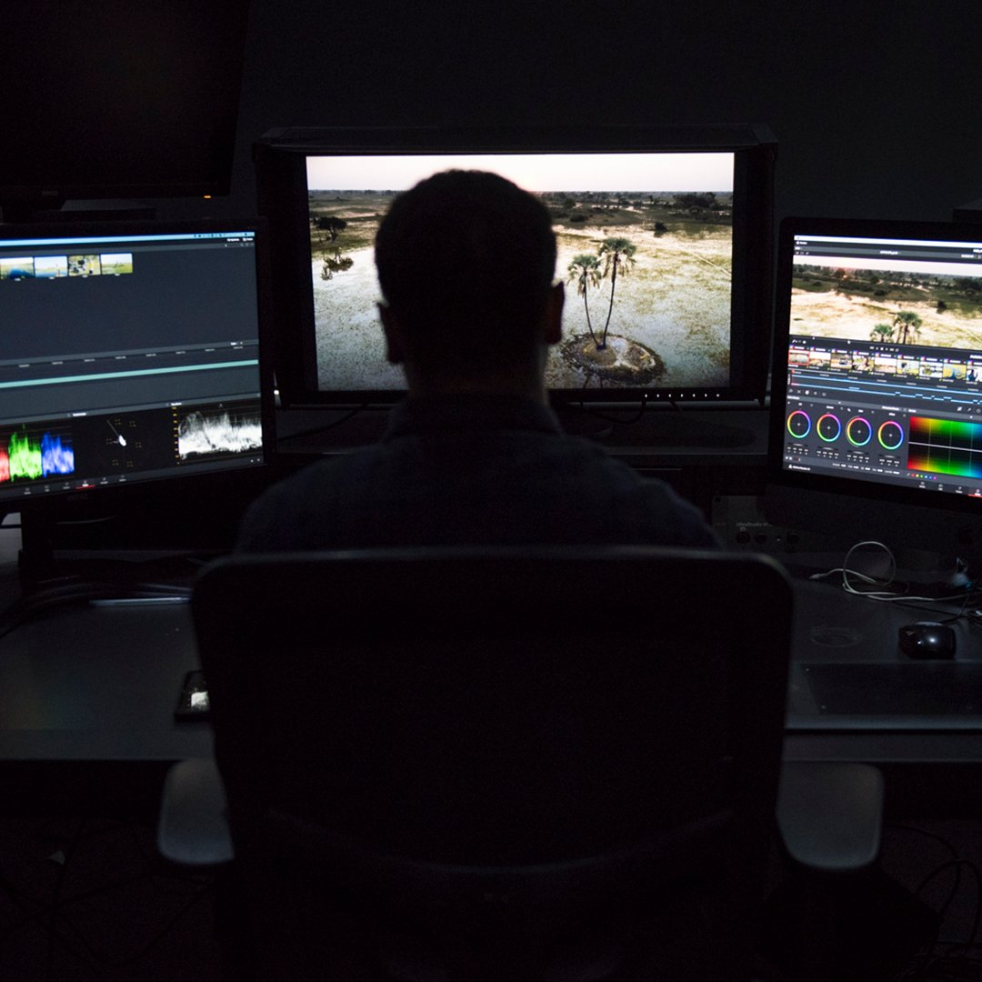 New Vacancy: We are seeking a Junior Colourist & Online Editor with Avid Media Composer and DaVinci Resolve experience. 12 month contract with applications closing 6th June. Apply & more info via @tvtalentmanager here: https://t.co/bG5aDbhQ6c https://t.co/IQPk6KM7Td