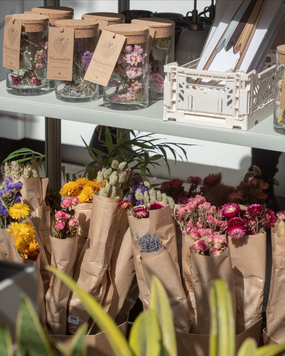 Dried flowers are making a comeback and we couldn't be happier! Buy in-store...
