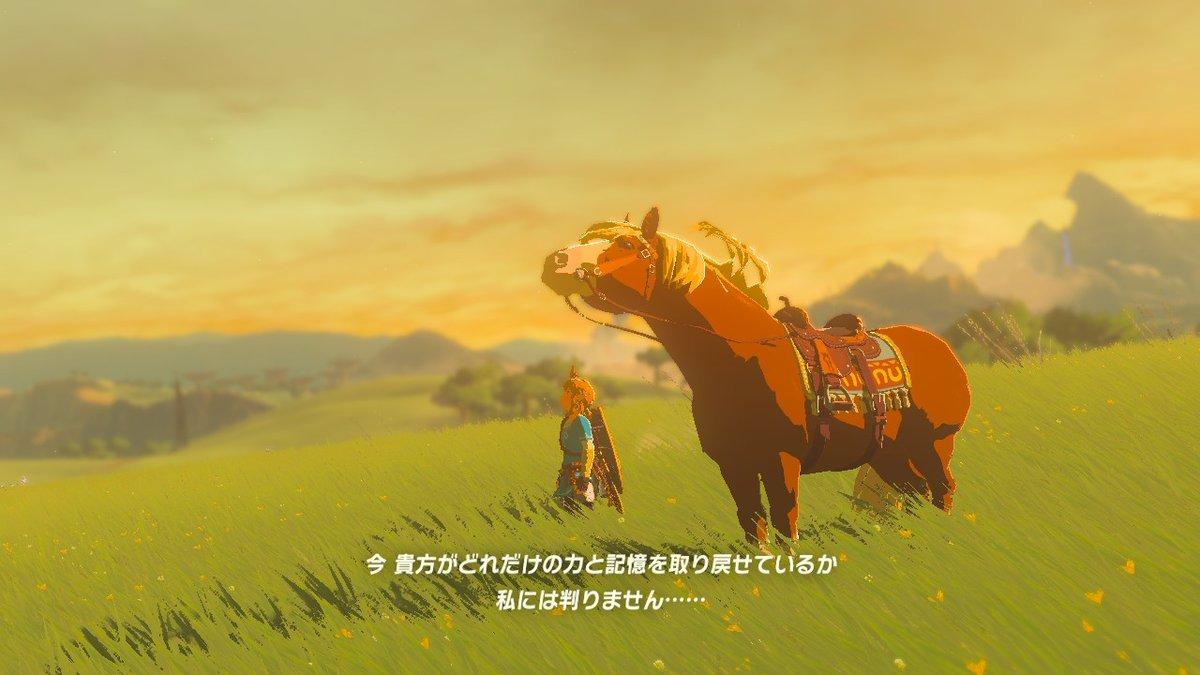 test ツイッターメディア - 突然現れた馬…エポナなの??だったらいいな、懐かしい…T▽T  #ゼルダの伝説 #ブレスオブザワイルド #BreathoftheWild #NintendoSwitch https://t.co/Ydf8GtaW5c