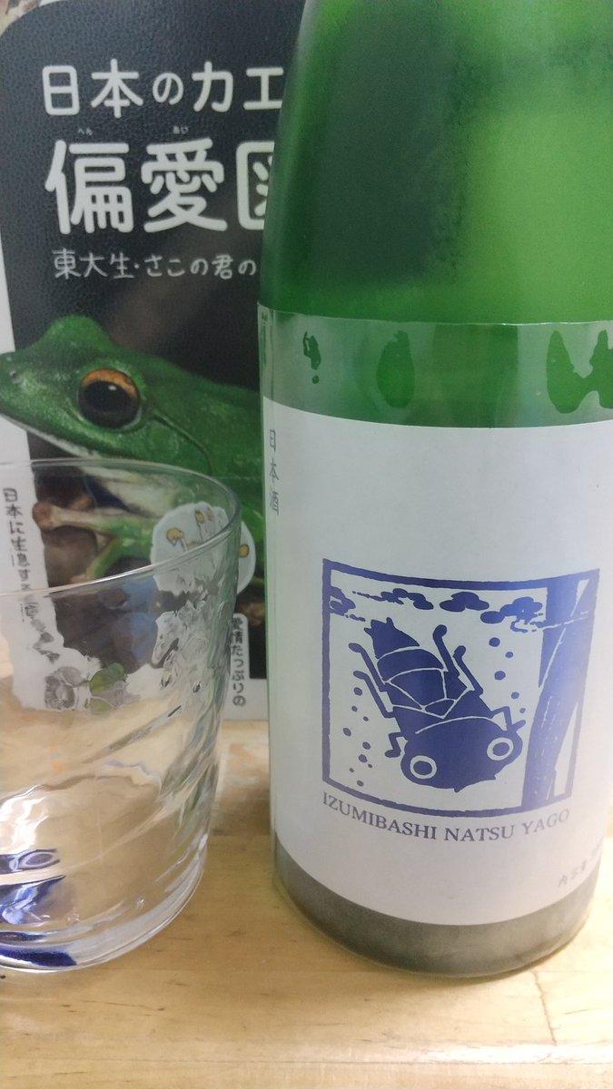 test ツイッターメディア - 酒 酒 ♪ 本日はいづみ橋 夏ヤゴブルー! ヤゴの天敵、カエルの図鑑を見ながら飲みますか ヤゴの時にはオタマジャクシ食べちゃうのに逆襲されちゃうんだね https://t.co/rCQcQQv0Cu