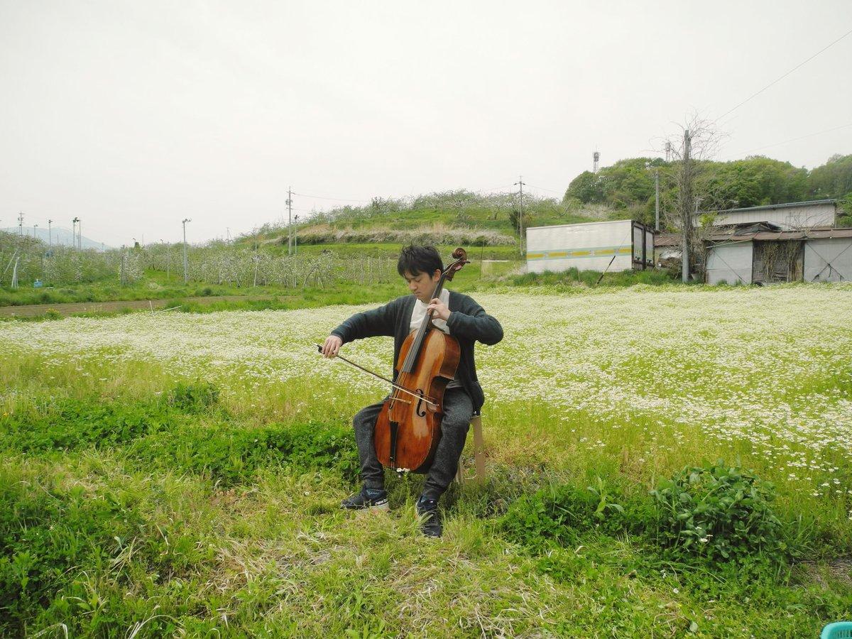 test ツイッターメディア - 今日は望月の農家「百笑農房」さん@hyakusyonobo にお邪魔して、満開に花咲くカモミール畑でチェロを弾かさせていただきました。信州佐久の素晴らしい地域資源×音楽。今後の展開が楽しみです! #sakkporano https://t.co/gN8jtqYJEo