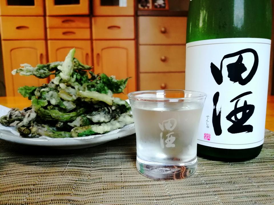 test ツイッターメディア - 天然山ウドの穂先部分を天ぷらにしました。 クセの強い山ウドに対抗できる酒は、田酒の山廃しかないと思い、冷蔵庫から引っぱり出してきました。 美味しい酒菜に、旨い酒の組み合わせで、至福の晩酌タイムとなりましたとさ。   田酒 特別純米酒 山廃仕込 醸造元:株式会社 西田酒造店(青森県青森市) https://t.co/60qYd9bnvd