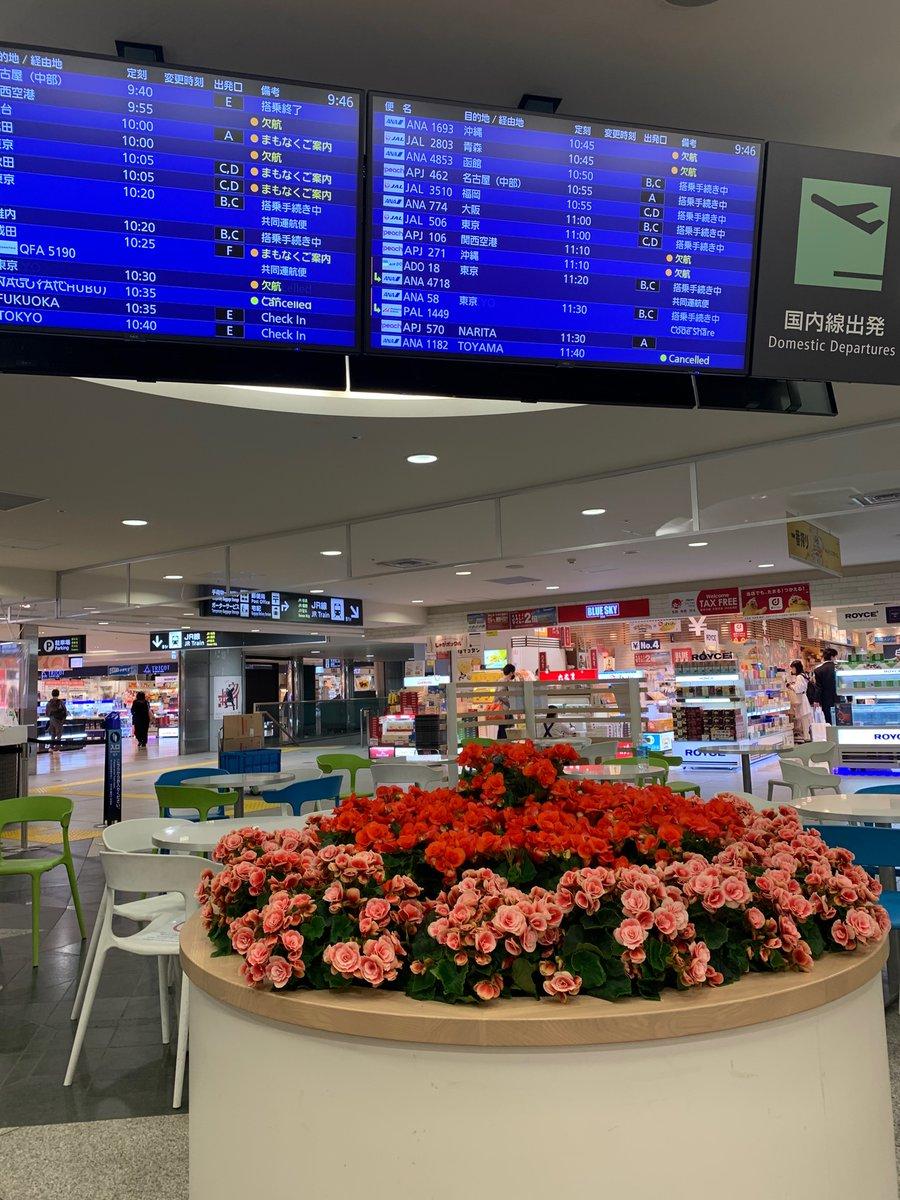 test ツイッターメディア - @__4_leaf_clover 新千歳空港です。 https://t.co/hM9jY869aw