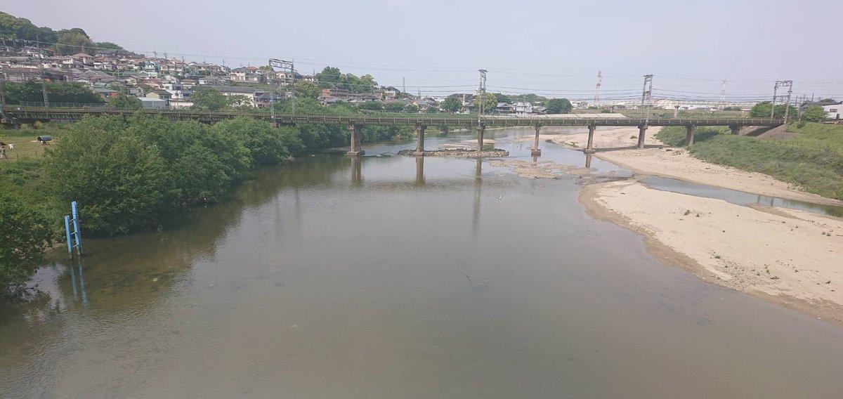 test ツイッターメディア - 大阪には大きな川が2本あるんや!淀川はよく知られてるんやけど、大和川ってあまり知られてへんねん。年に何回かクリーン作戦実施されてて、ワイも休み合えば参加してるんや~(ここんとこコロナで中止されてるねんけど。はやく日常に戻ってほしいな!)  #大和川  #たこパティエ  #大阪土産 https://t.co/b1qLmFbjnX