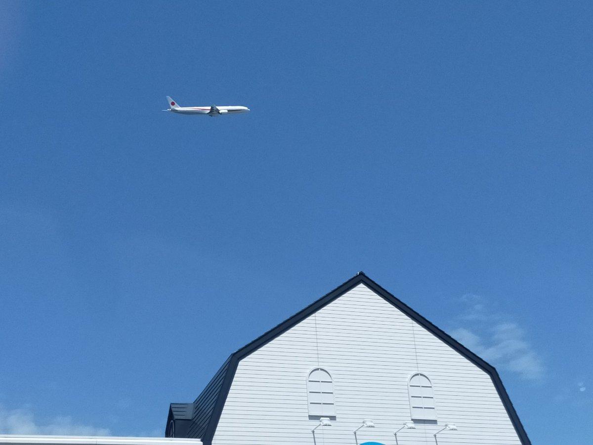 test ツイッターメディア - 新千歳空港着いた。さっきから政府専用機が二機とも離陸して行ったけどどこへ行くのかな😁。 https://t.co/A4whEymmGC