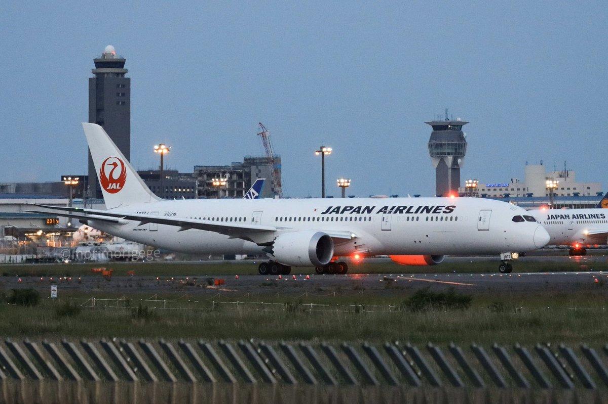 test ツイッターメディア - JALの787をアンチコリジョン🚨狙いで撮ったら、後ろの787のも光ってる写真が撮れた✌️  #成田空港 #さくらの山 #JAL #B787 https://t.co/0mJVO9an7e