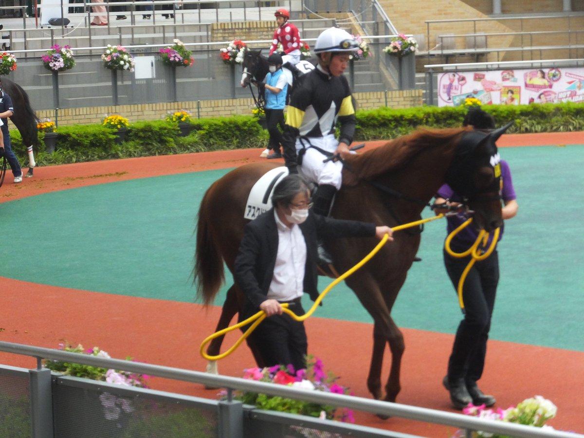 test ツイッターメディア - レッツゴードンキの下、アスクドンキバックと岩田望来騎手 #keiba https://t.co/fhx48Yq8pF