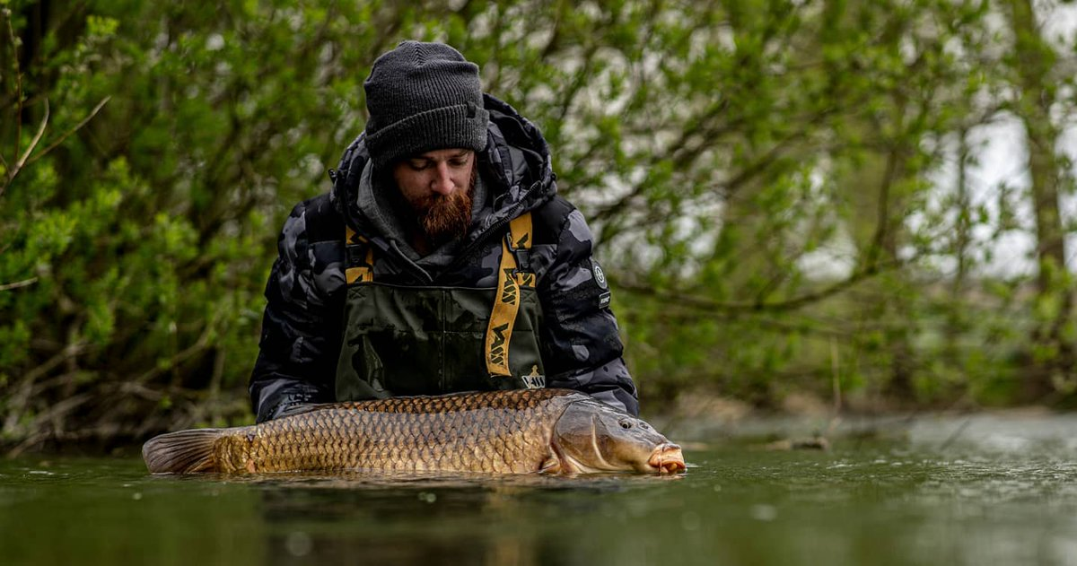 EPIC spring session: 17 carp in 48hrs! Watch now😍  https://t.co/JrBVWzbuEh  #CARPology #CarpFishi