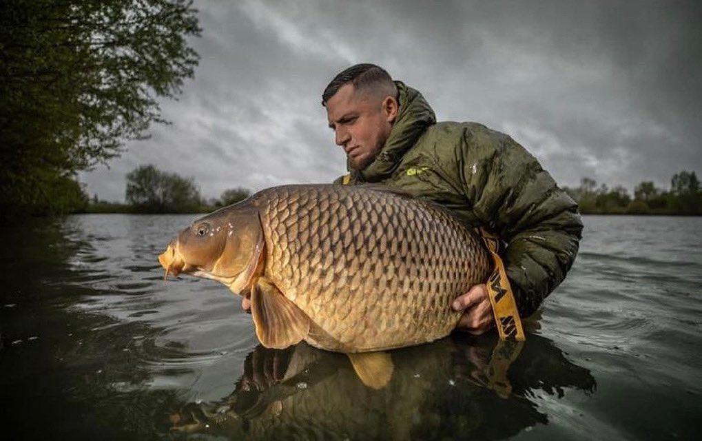 Big common for that man Younes Gonzalez 👊🏻🎣 #Carp #CarpFishing #Fishing #BigCarpBuzz @BigCa