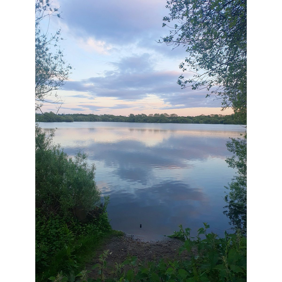 Now who carnt say they dont like this? #lake #sunset #carp #carpfishing #carpfishinguk https://t.co/