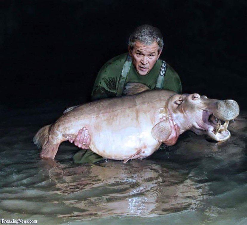 🇭🇺 BIG Hungarian Hippo 🇭🇺  @BigCarpBuzz  #BigCarpBuzz #Carp #CarpFishing #Fishing https: