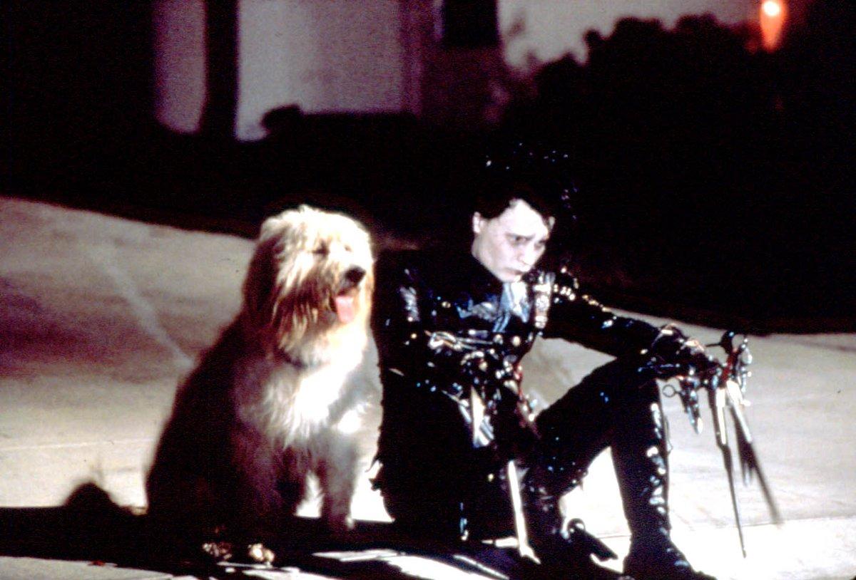 """test ツイッターメディア - ✂️#HappyBirthday🚂  今日(6/9)は  #ジョニーデップ の誕生日🎉 悲哀の人造人間から恐るべき犯罪者まで… クセのある役が魅力的❤  """"変幻自在""""なカメレオン俳優の キャリアを振り返ろう▶️  『#シザーハンズ』🎞️https://t.co/AGGoUZN0d7  『#オリエント急行殺人事件』🎞️https://t.co/DHFgvRUxyM https://t.co/H57ZKQxxOW"""