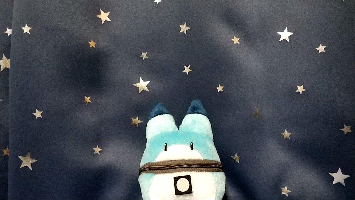 test ツイッターメディア - 星空とビービ♪(●´ω`●) #ラッキービースト https://t.co/pxcg0pXUGM