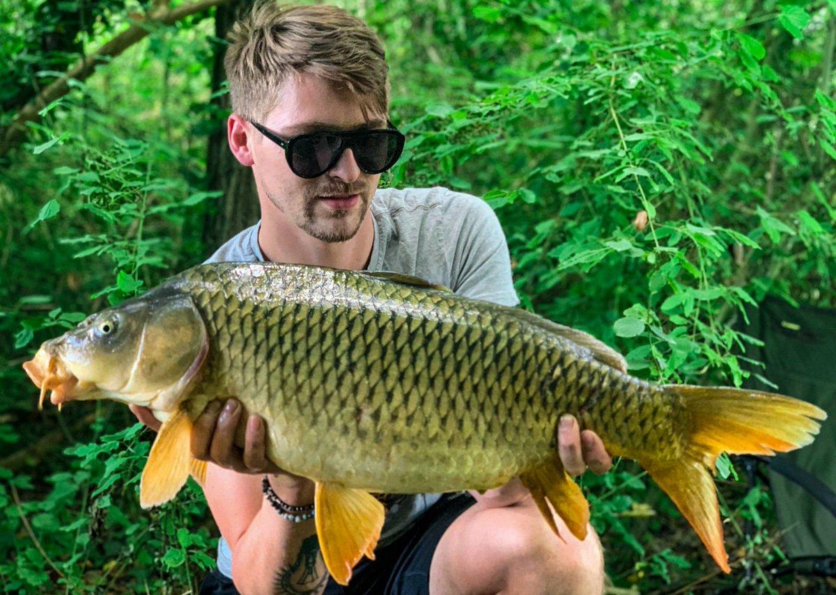 #carp #carpfishing #fish #queencarp #tevere #river #boiles #carp<b>Passion</b> https://t.co/3aoLKDKP