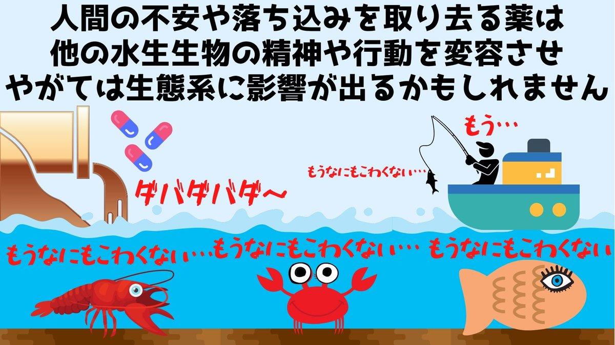 糞尿 ザリガニ リットル 水槽 エサに関連した画像-05