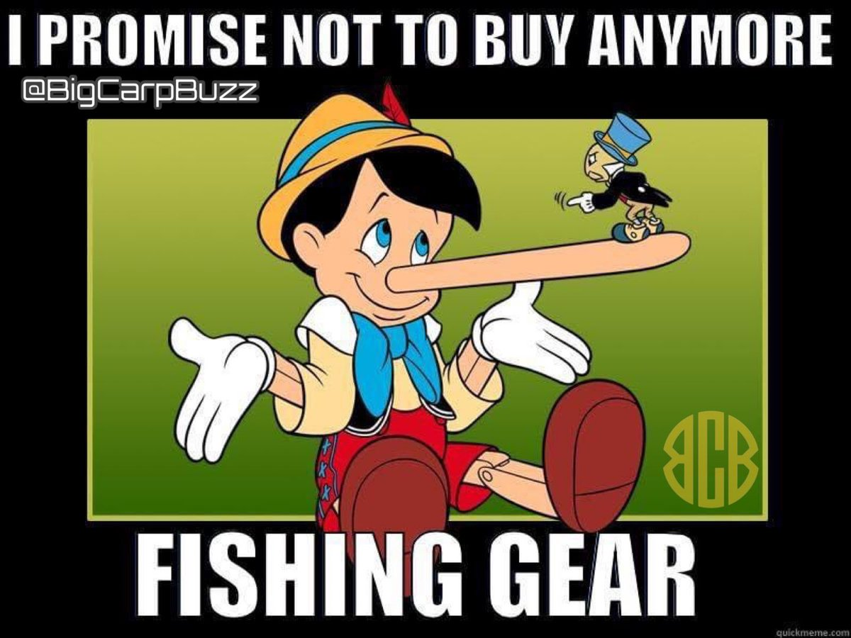 Good morning guys……… @BigCarpBuzz  #BigCarpBuzz #Carp #CarpFishing #Fishing https://t.co/P0WBF