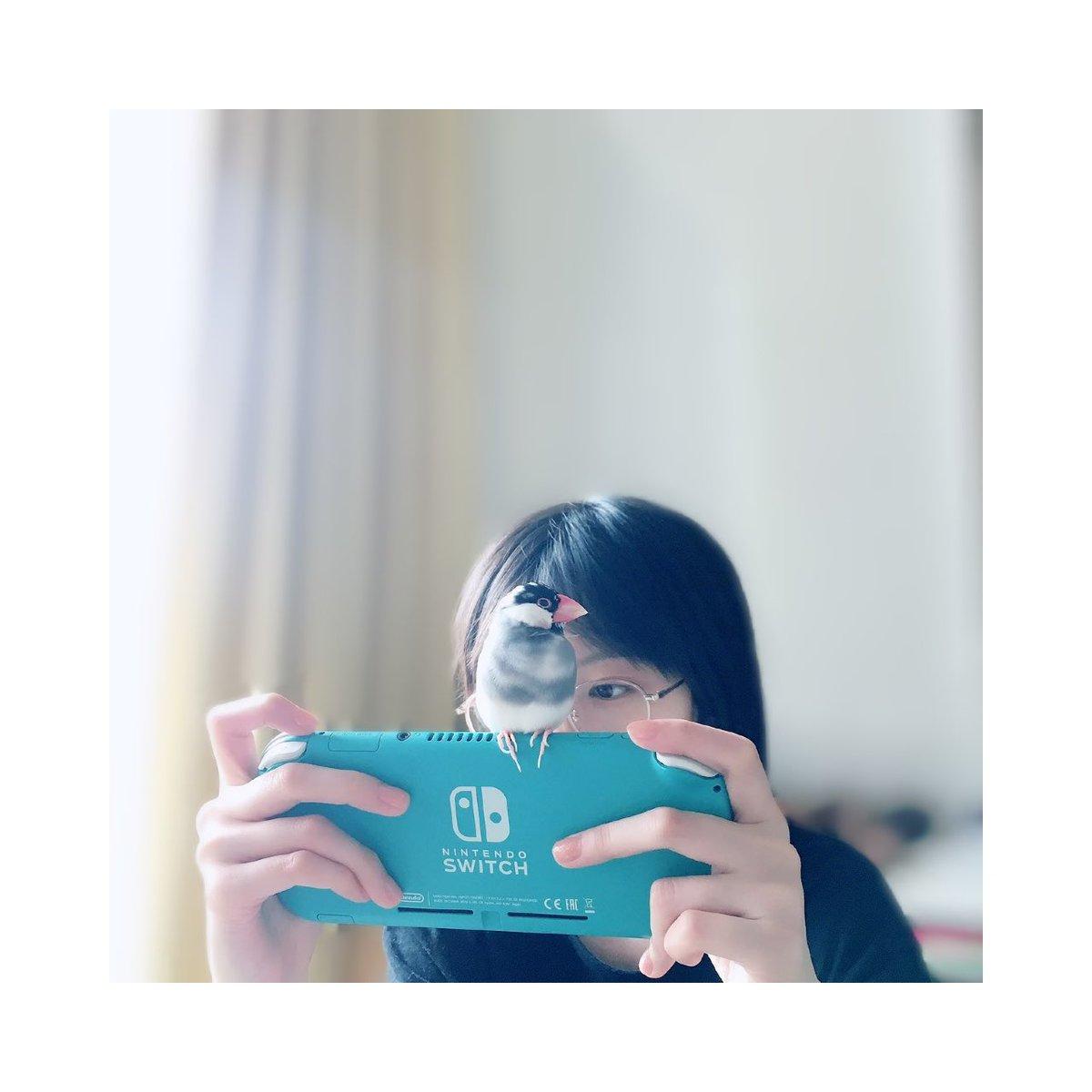 中島由貴の6月21日のツイッター画像