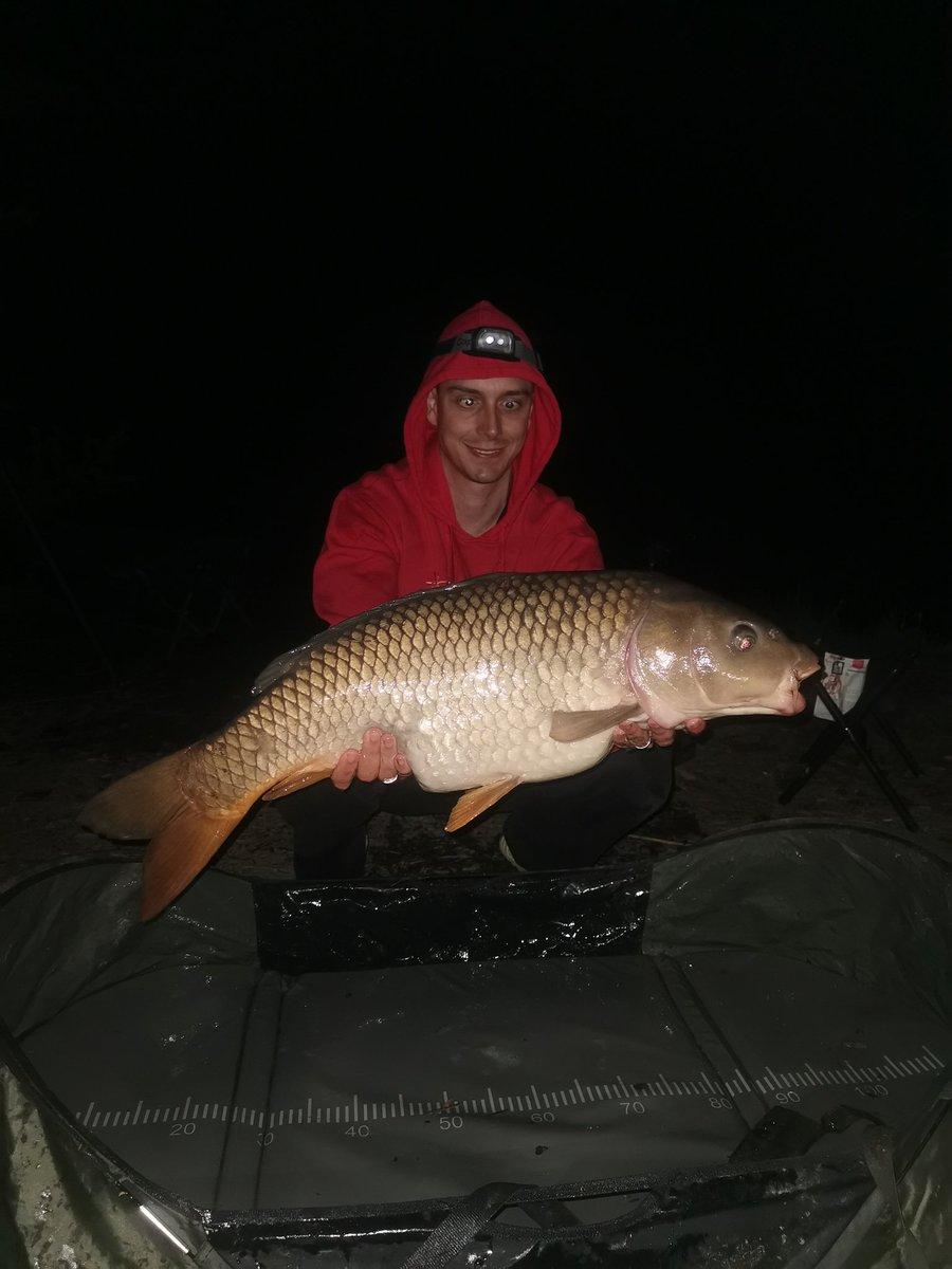 Look at the belly 😆😆😆  #carp #carpfishing #fishing #fishinglife #angling #<b>Ribolov</b> #s