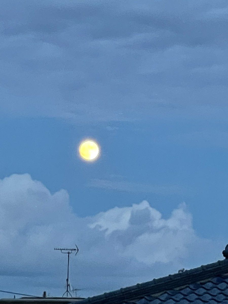 test ツイッターメディア - 萩の月みたいなお月さま https://t.co/VAaEPOeKoU