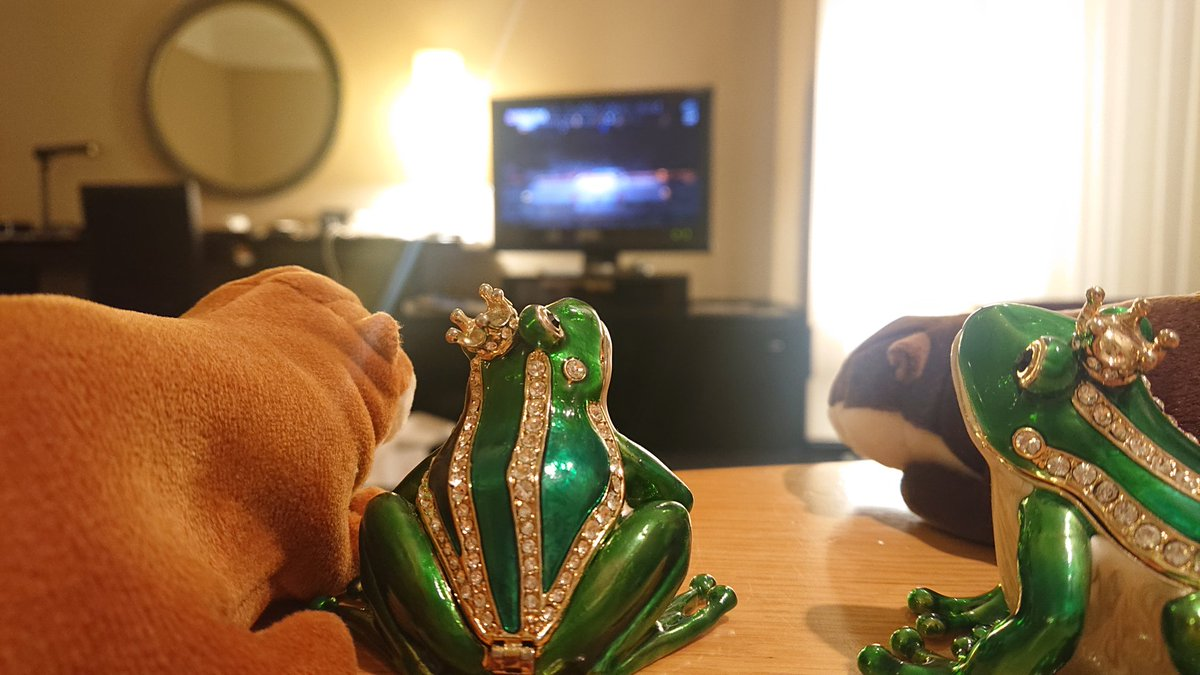 test ツイッターメディア - 東京2020オリンピック 開会式をみんなで観ながら 京都北山マールブランシュの モンブランをいただきます🐸エヘ  鼻がいい2名のカエルが さっそく寄ってきました(笑)  MISIAさんの国歌斉唱、 とてもよかったです🐸スバラシイ https://t.co/tYj0EcRV3W
